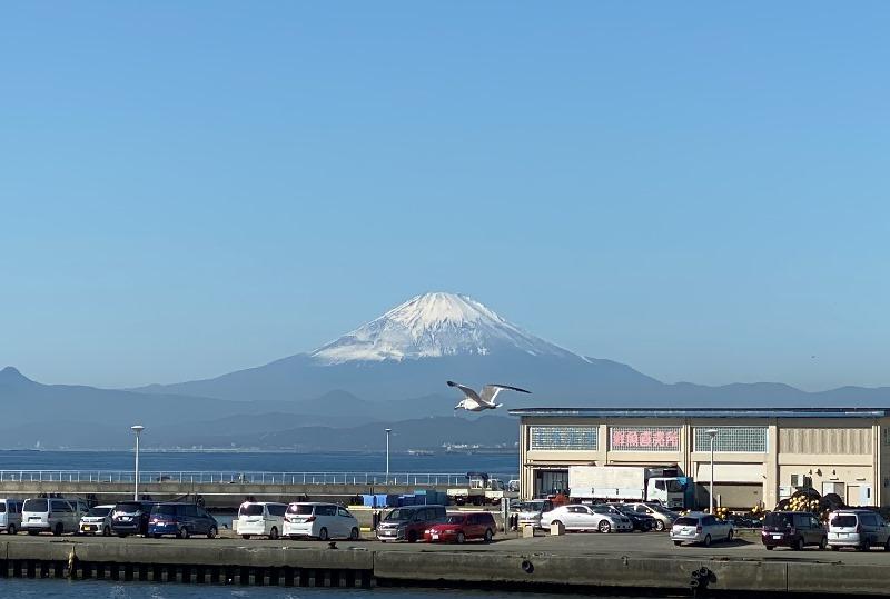➃富士山超見える_2