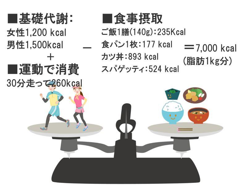 カロリーの収支の天秤図