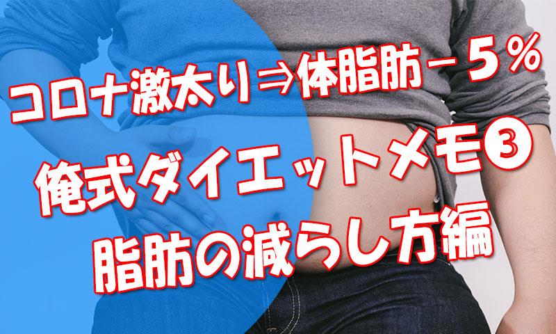コロナ太り後1か月で体脂肪率-5%!俺式ダイエットメモ【➂脂肪の減らし方編】