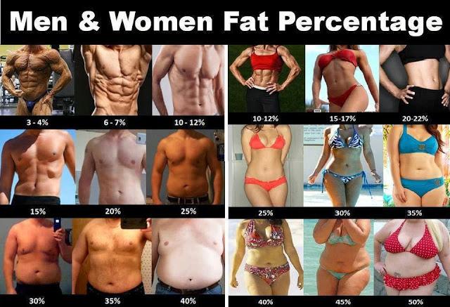 男女の体脂肪率と見た目の違い(Fitness Worldさん)
